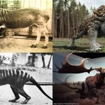 List of Top 10 Extinct Animals - The Rarest and the Strangest